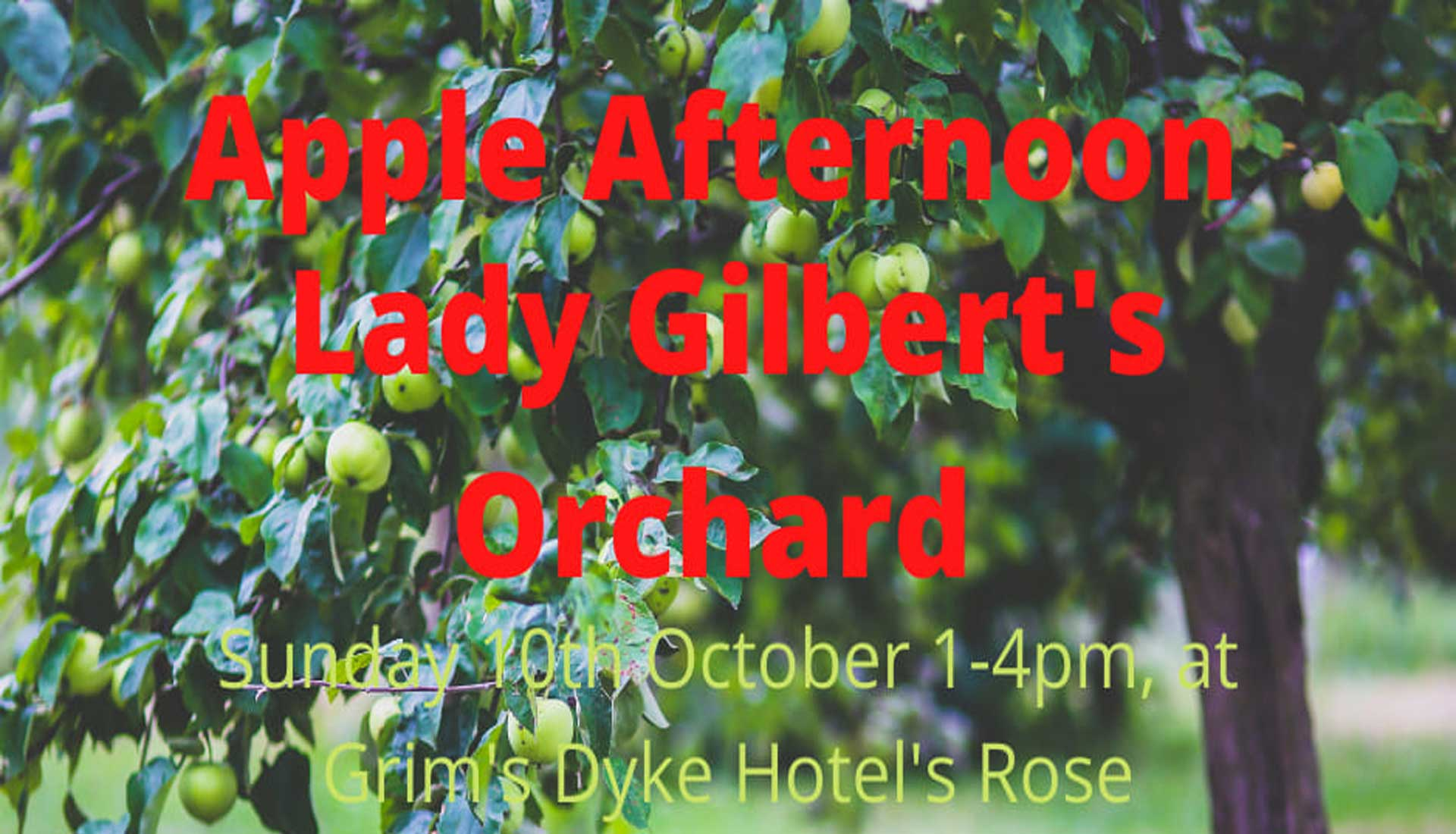 Apple Afternoon Lady Gilberts Orchard